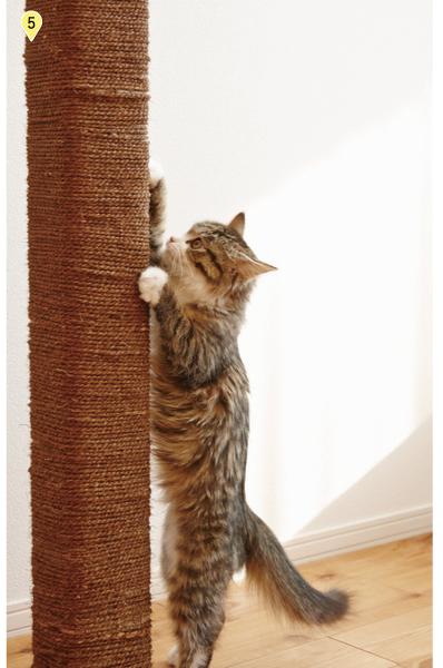 猫が爪をとぐための爪とぎ柱