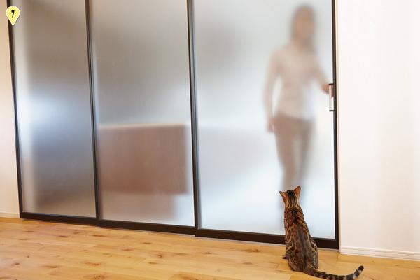 猫も安心する半透明のパーティション